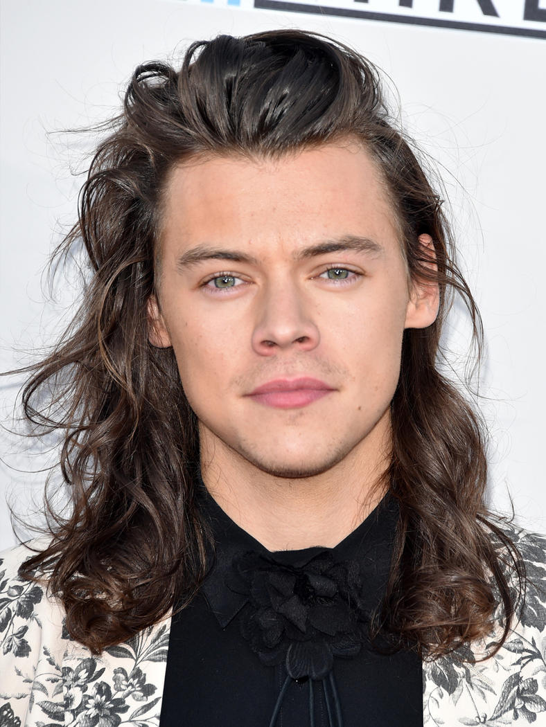 Harry styles meet and greet 2017 wealth salary income worth how much harry styles kristyandbryce Image collections